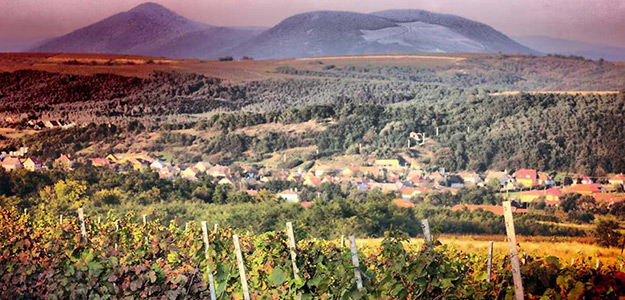 Góry, zabytki i wino